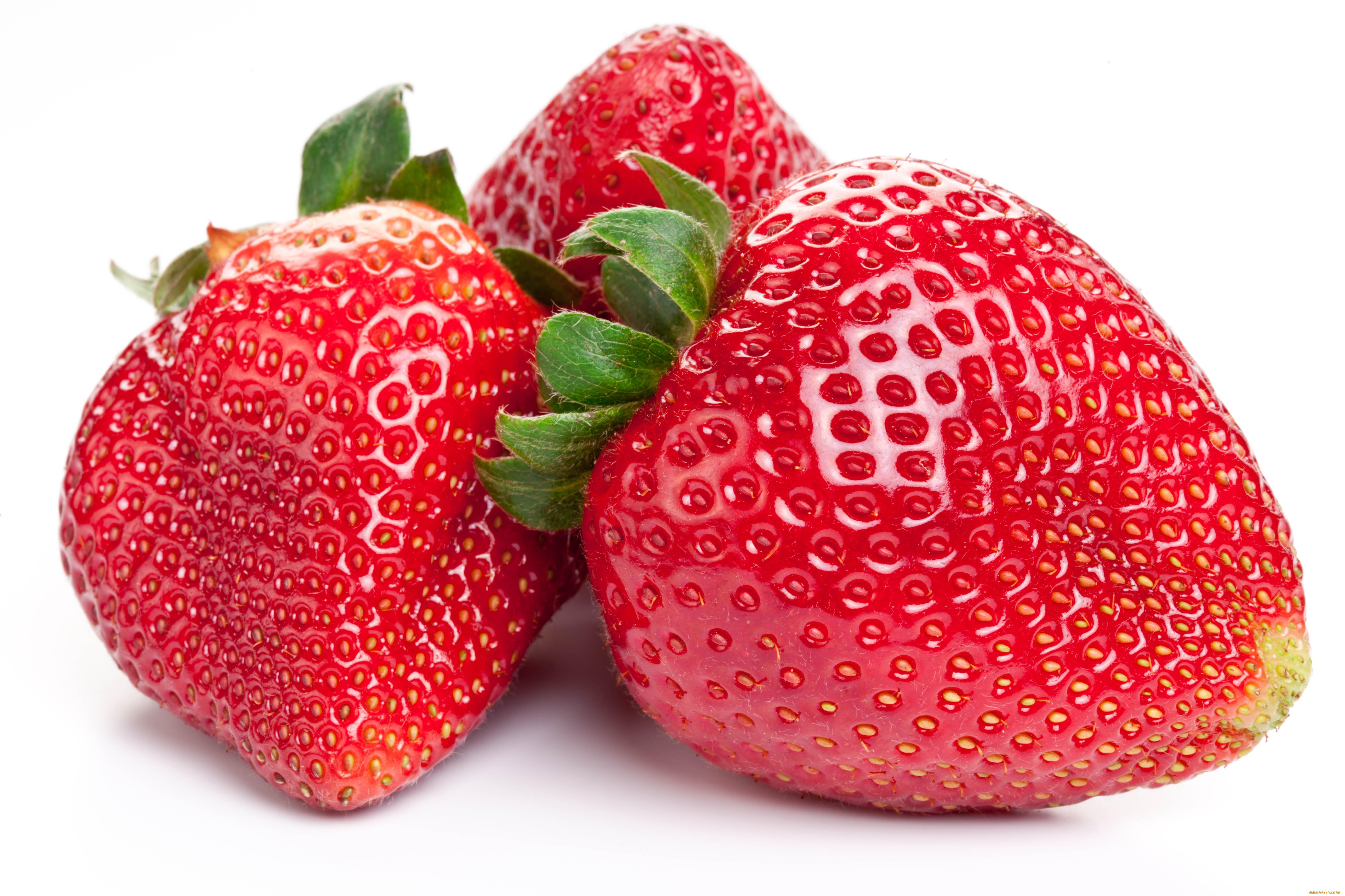 Картинка ягоды клубники